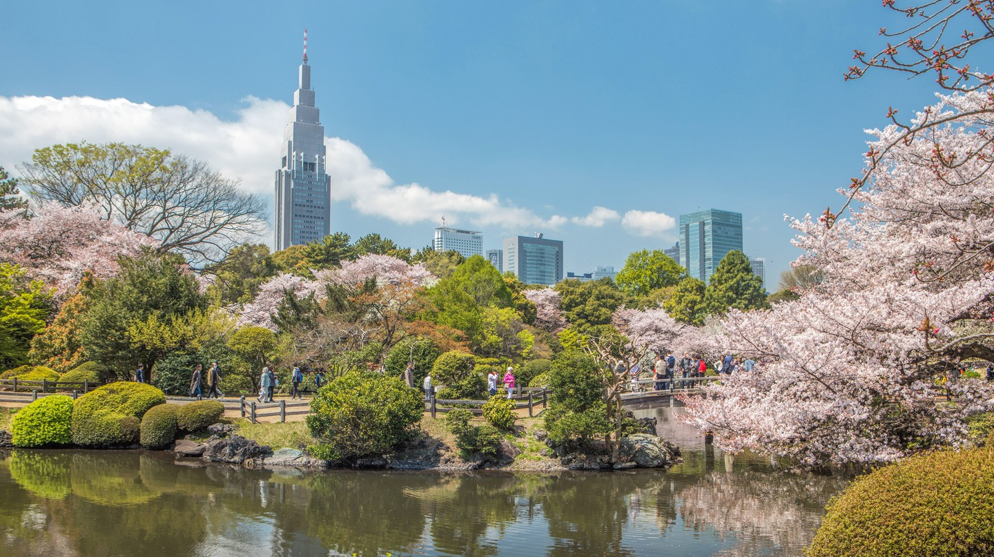 Set aside a few hours to explore nature at Shinjuku Gyoen