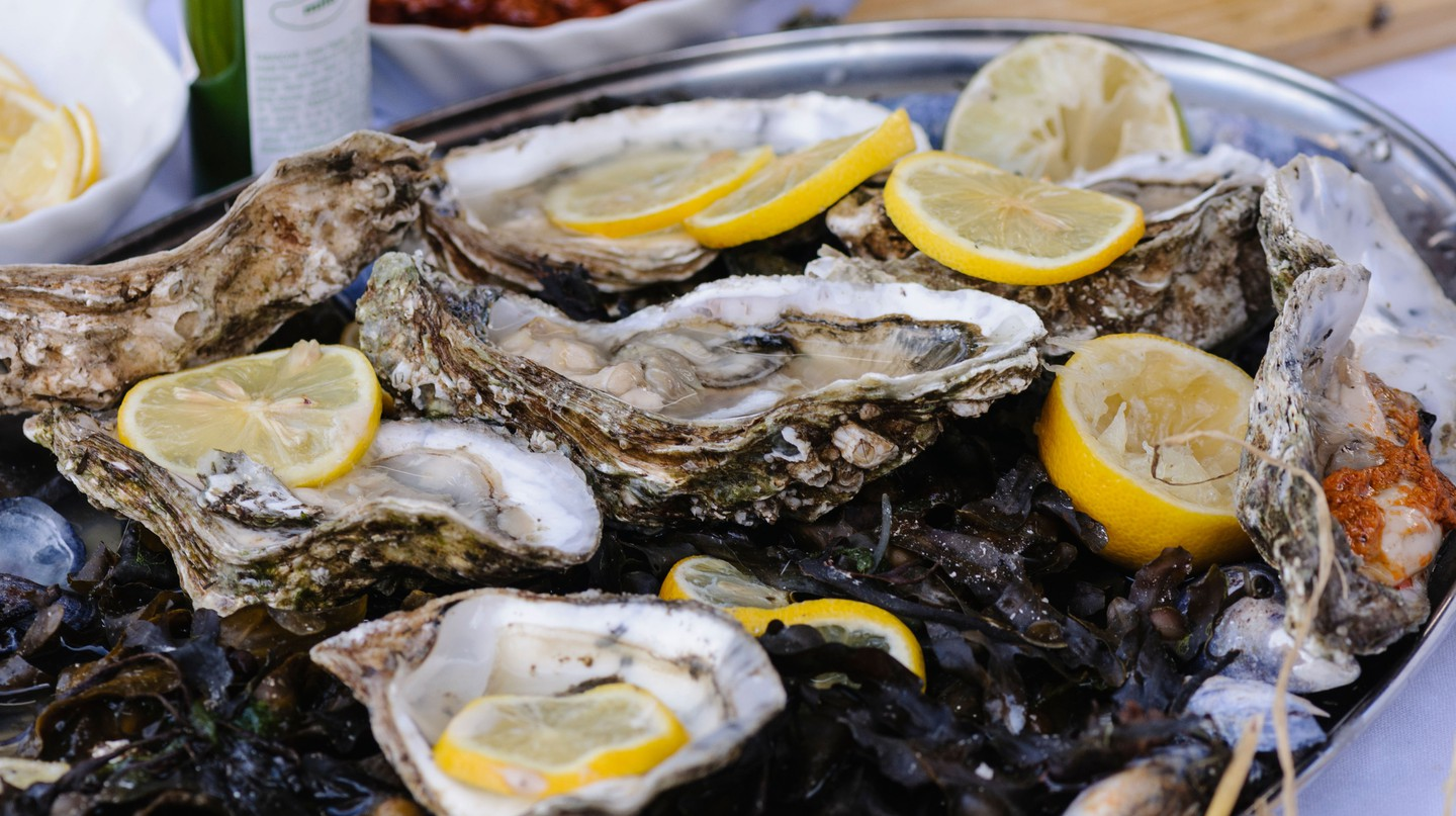 Oysters on a bed of seaweed in Ireland