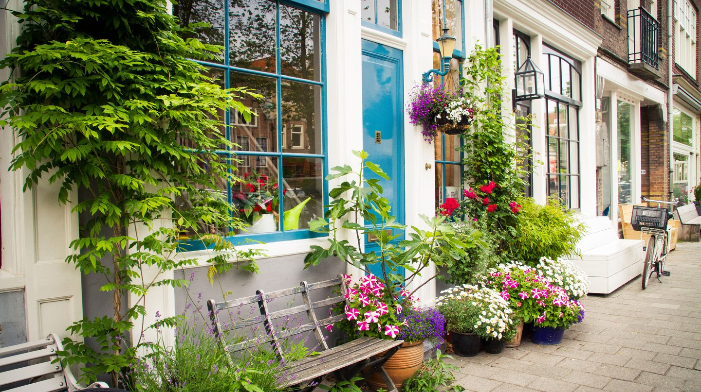 A colourful flowering facade garden with a bench in the Jordaan neighbourhood in Amsterdam