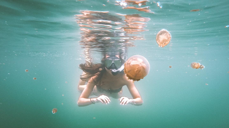 Swimming with stingless jellyfish in Raja Ampat's Jellyfish Lake