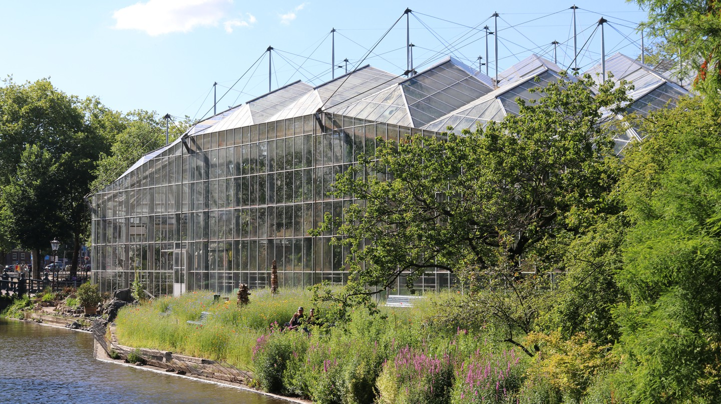 Amsterdam's Hortus Botanicus has a long and storied history