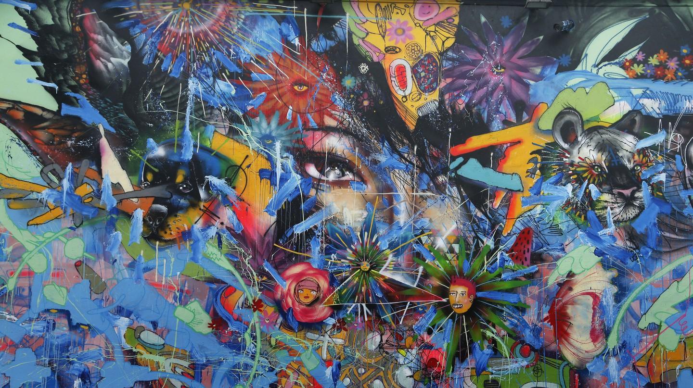 Street-art lovers flock to Miami's Wynwood