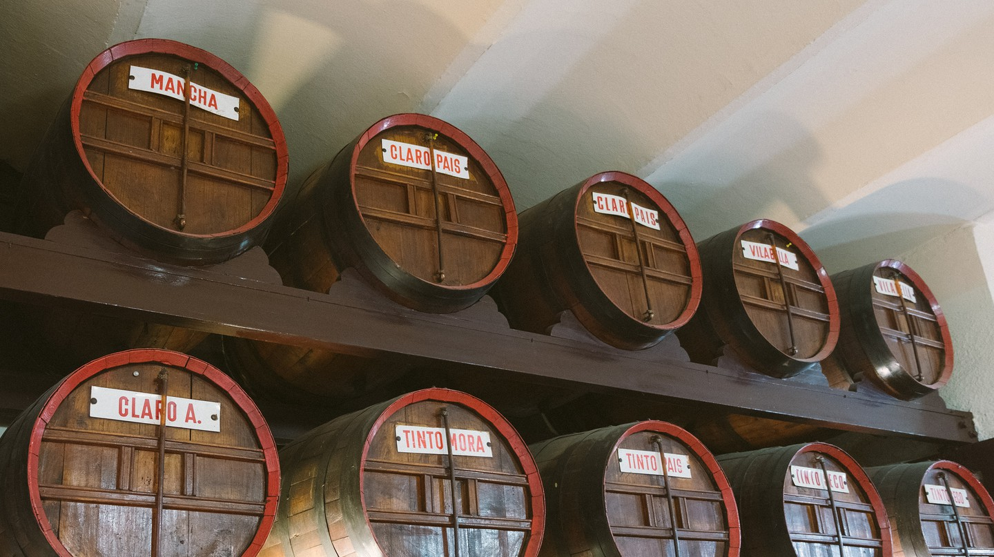 Try drinking from a porrón at Bodega Montferry in Barcelona