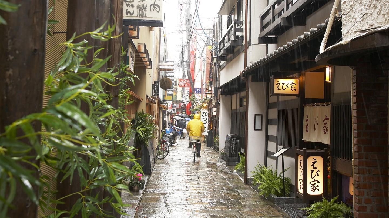 Hozenji Yokocho Alley is home to some terrific restaurants and bars