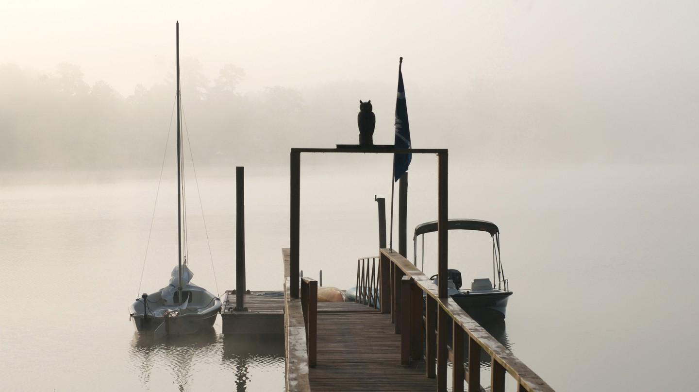 A foggy morning on Lake Murray
