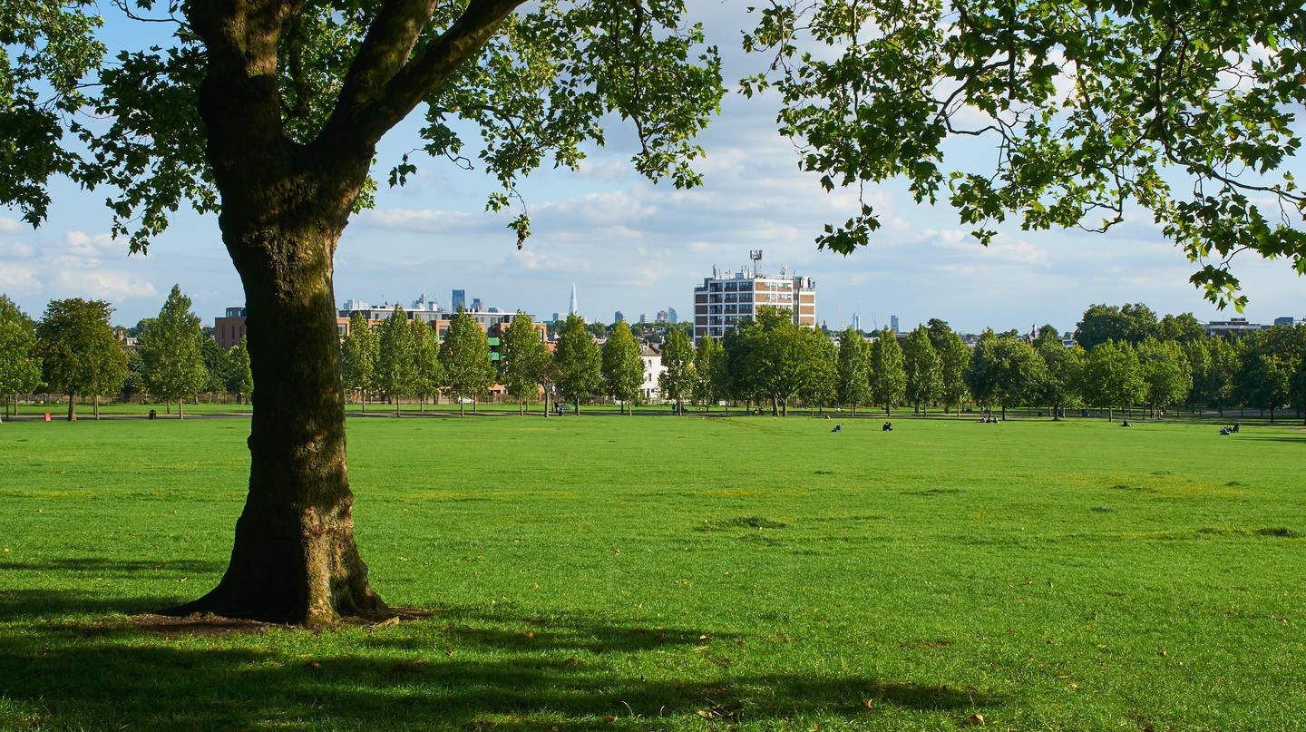 An eclectic mix of communities call Finsbury Park home, making it one of London's most multicultural neighbourhoods