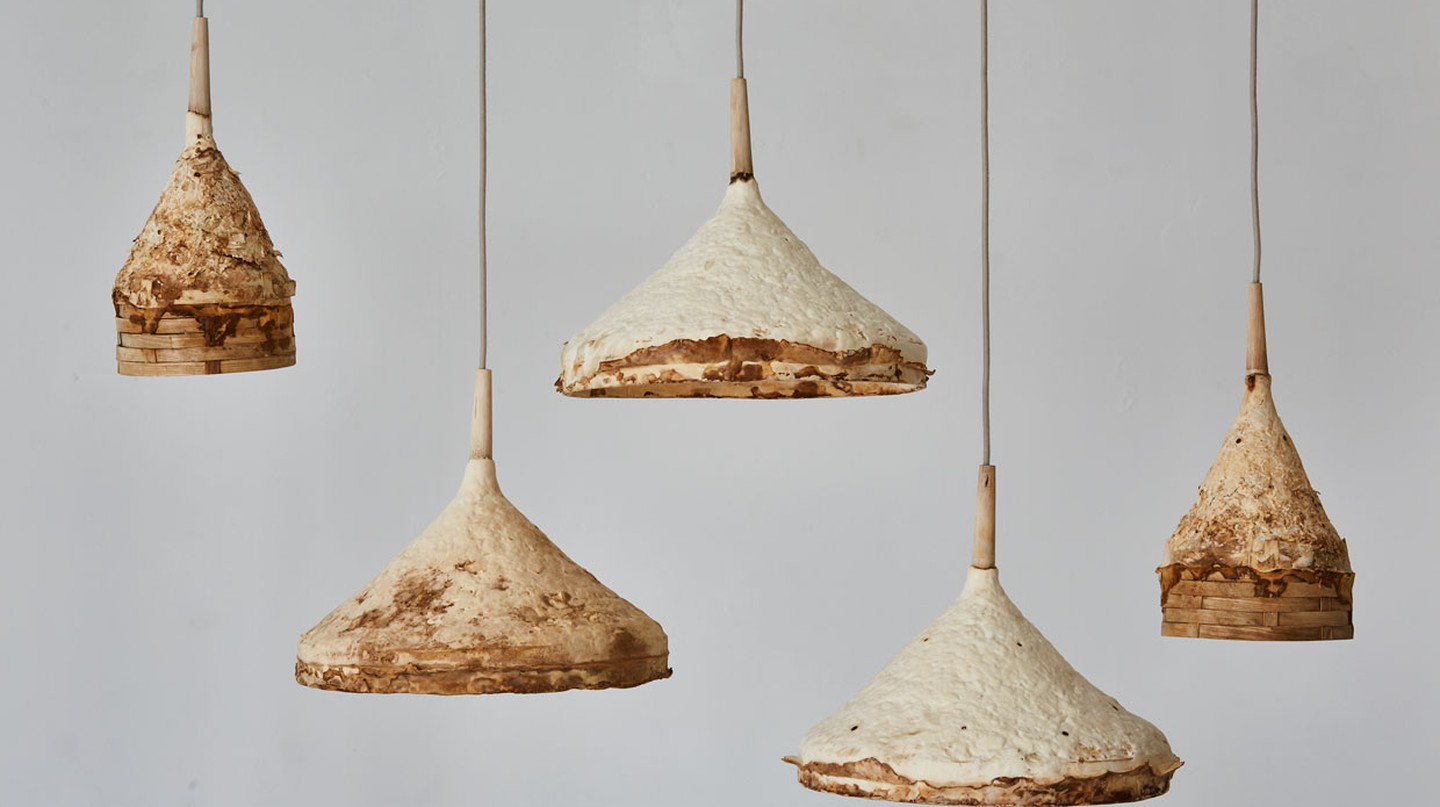 These ceiling pendant lights are made from mycelium that has been moulded into shape