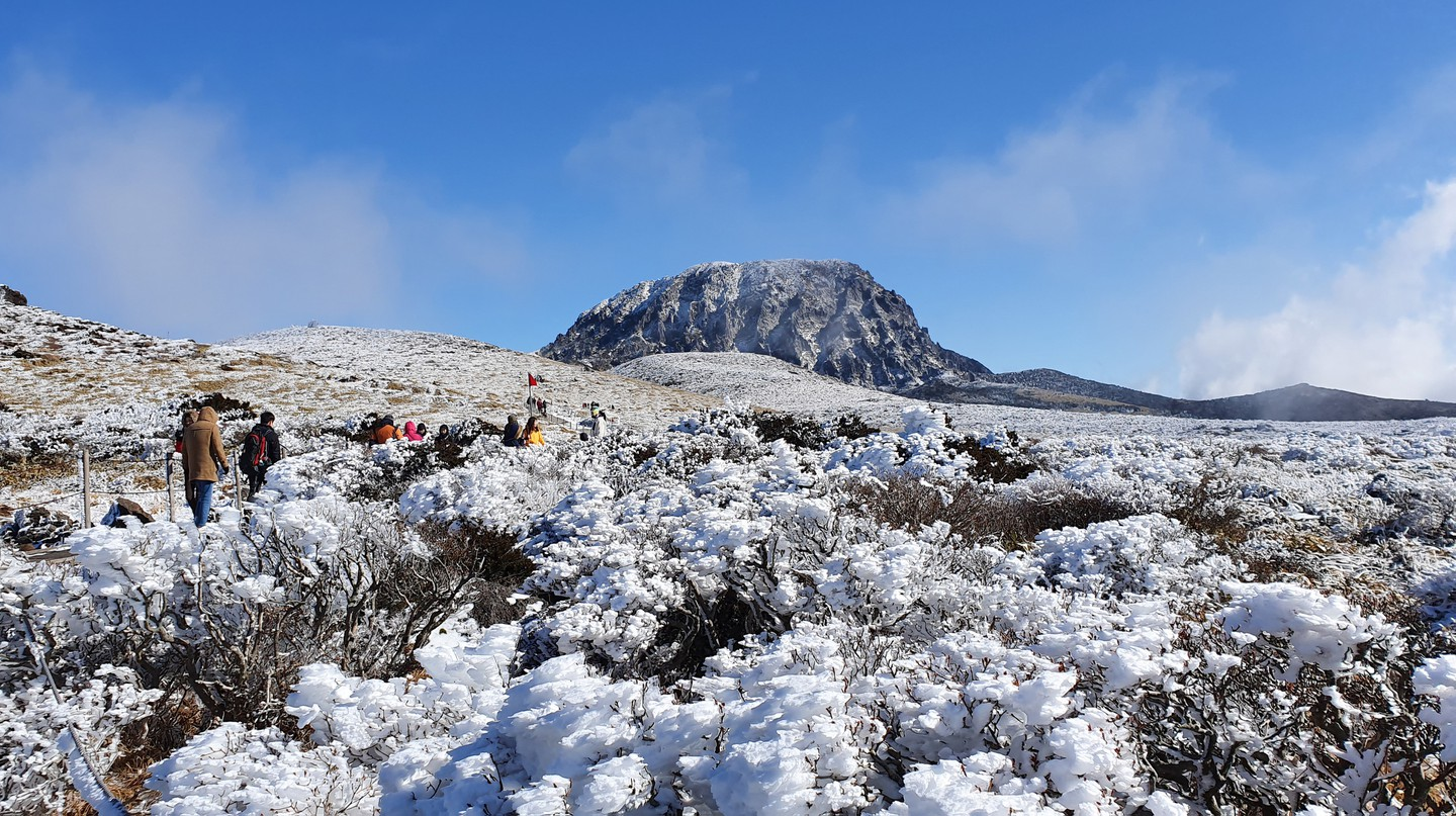 Mount Hallasan's snow-capped terrain makes for perfect picturesque hikes in winter