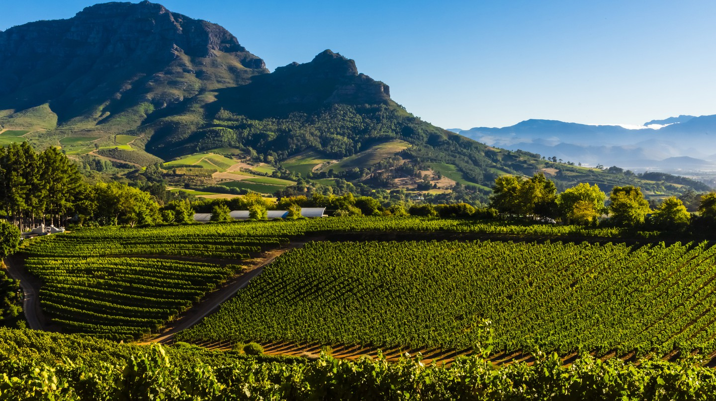 Cape Town and the Cape Winelands are the ideal place in which to savour delicious wines in spectacular locations