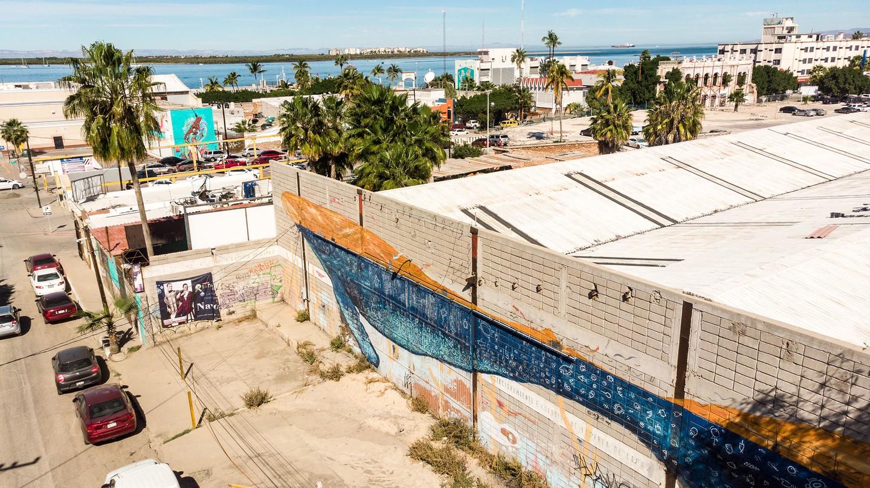 'Ballenon' by Dagos is one of many murals in La Paz, Baja California Sur, Mexico