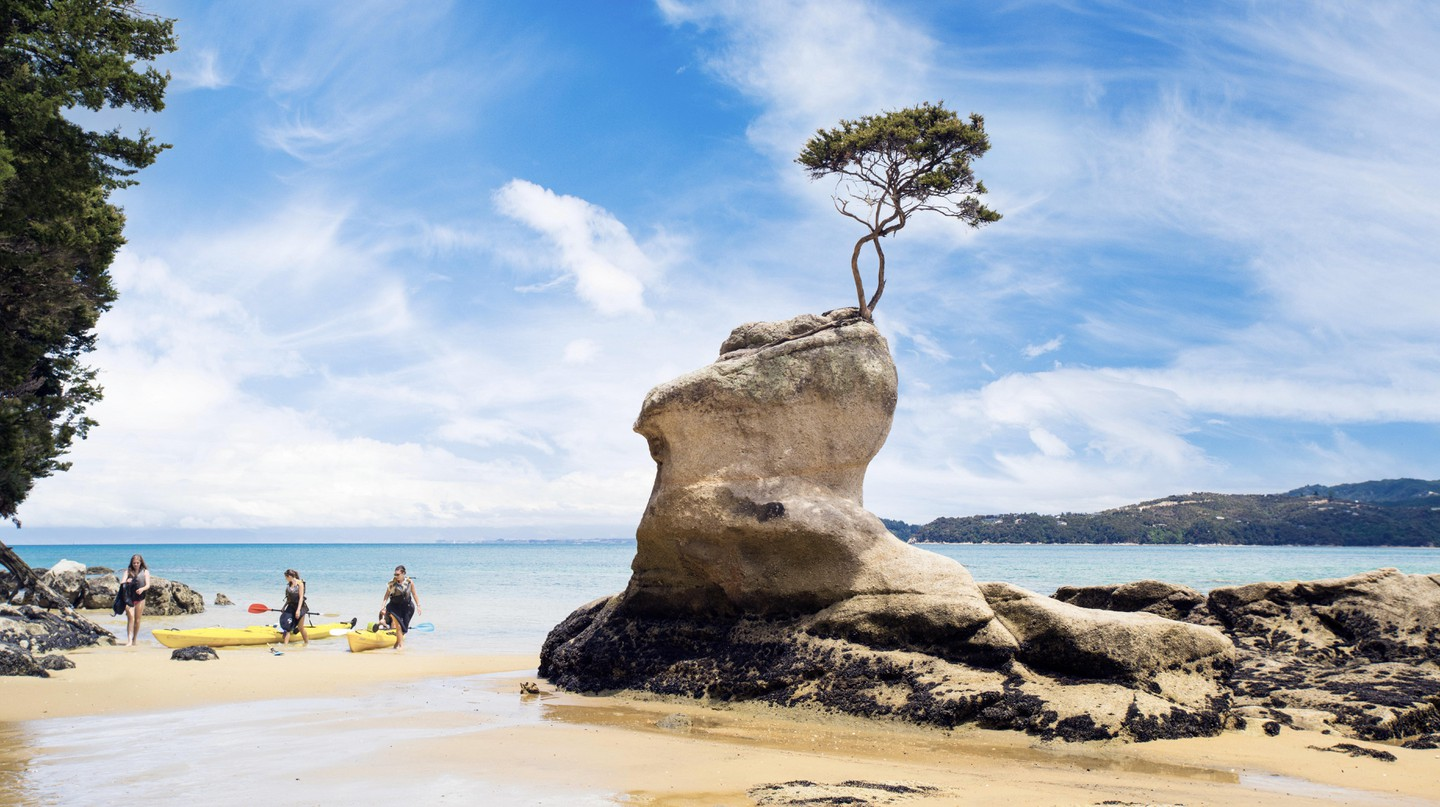 There's plenty to see and do in the Abel Tasman National Park