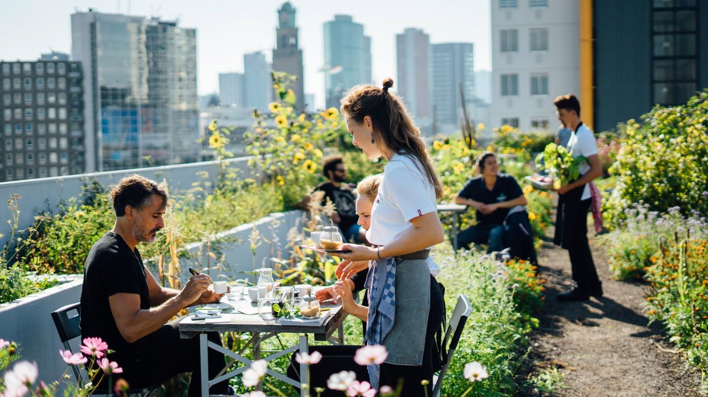 Rotterdam has a thriving café scene
