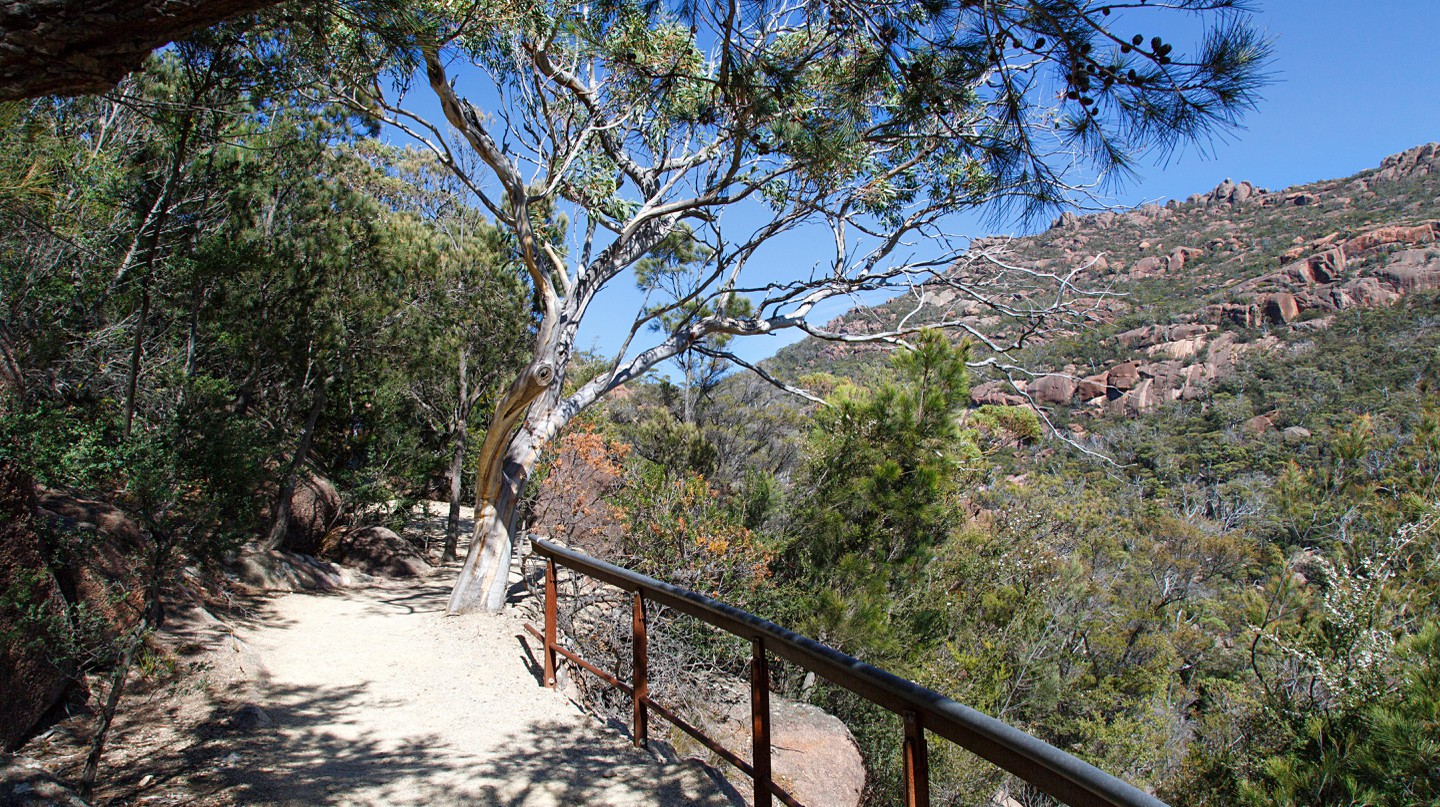 Walk your way around Tasmania, and head to the Wineglass Lookout for stunning views