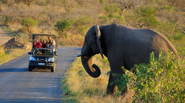 Safari in Hluhluwe Umfolozi National Park