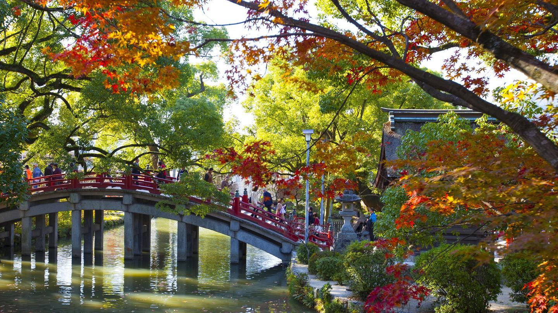 Dazaifu is full of historical tourist attractions