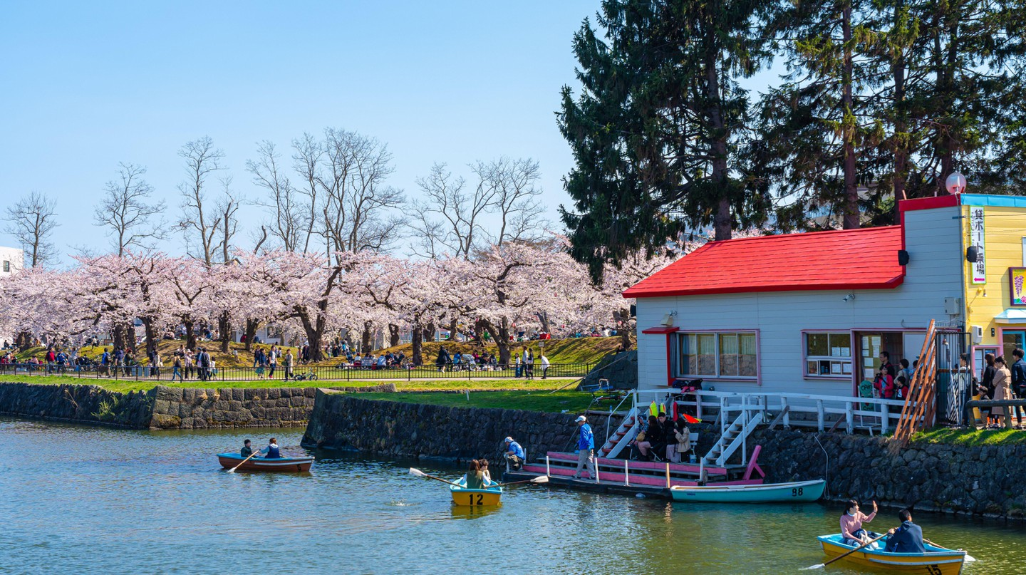 Goryokaku park is truly stunning in springtime, during cherry blossom season
