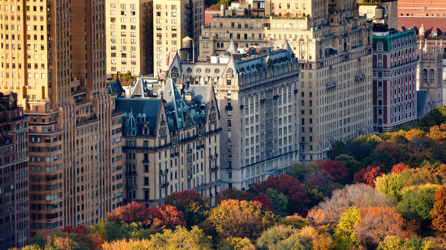 Explore Manhattan from any of these stylish hotels that won't break the bank