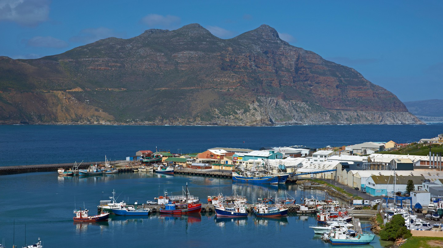 Hout Bay is a bustling hub of harbourside activity