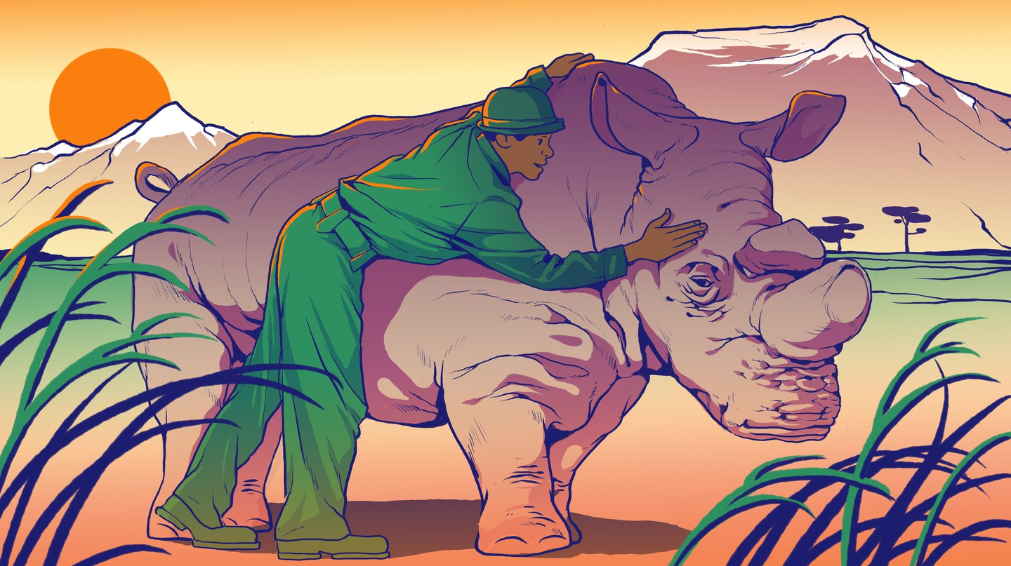 How Sudan, the World's Last Northern White Rhino, Improved Conservation