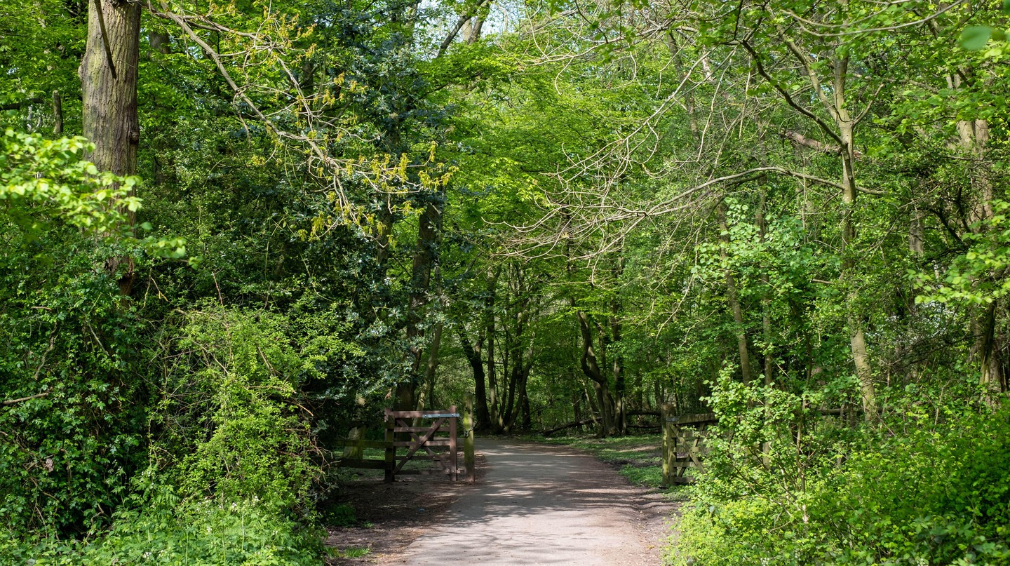 The London LOOP comprises approximately 242km (150mi) of scenic paths
