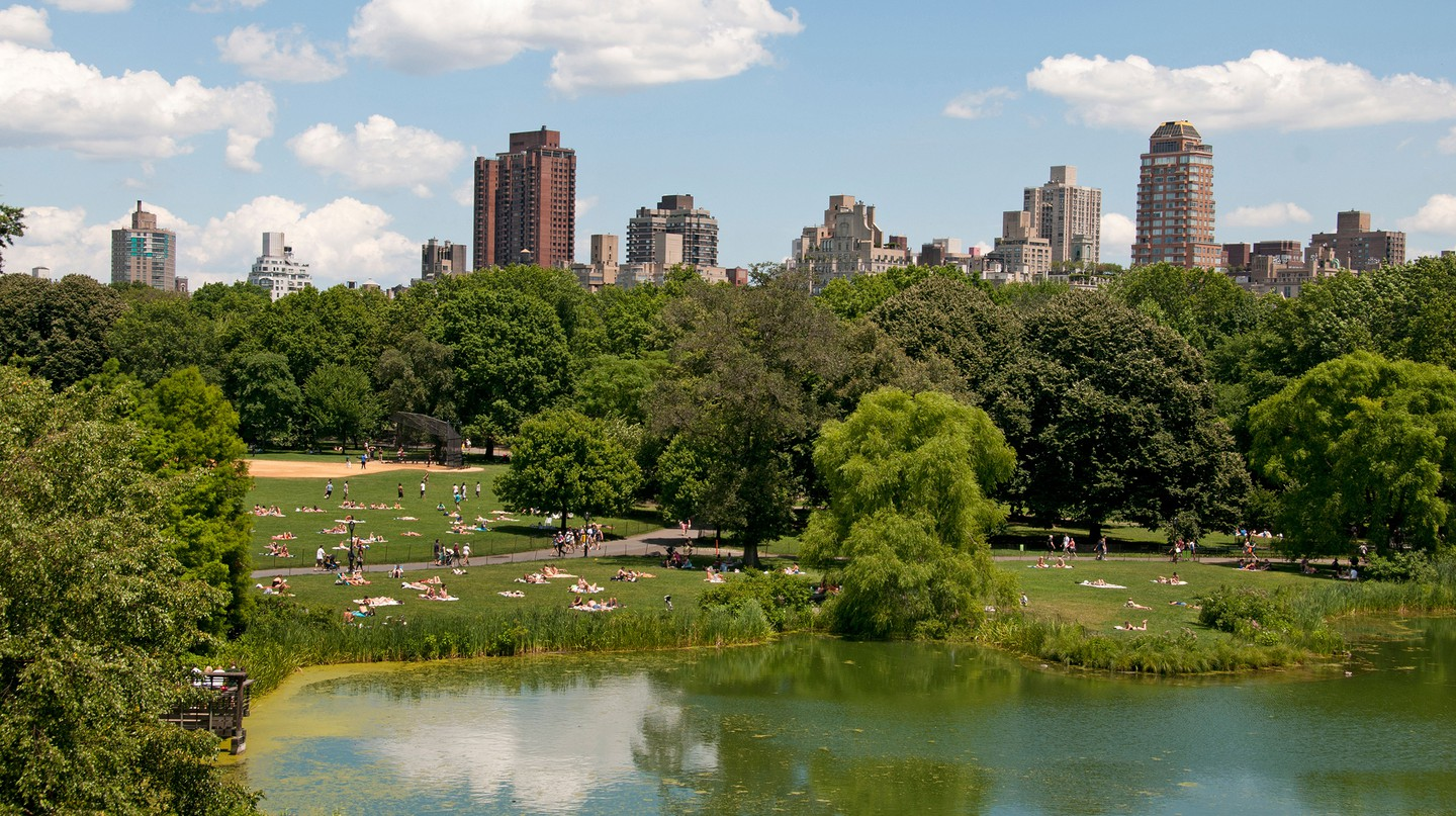 Some of the city's most lavish hotels overlook Central Park