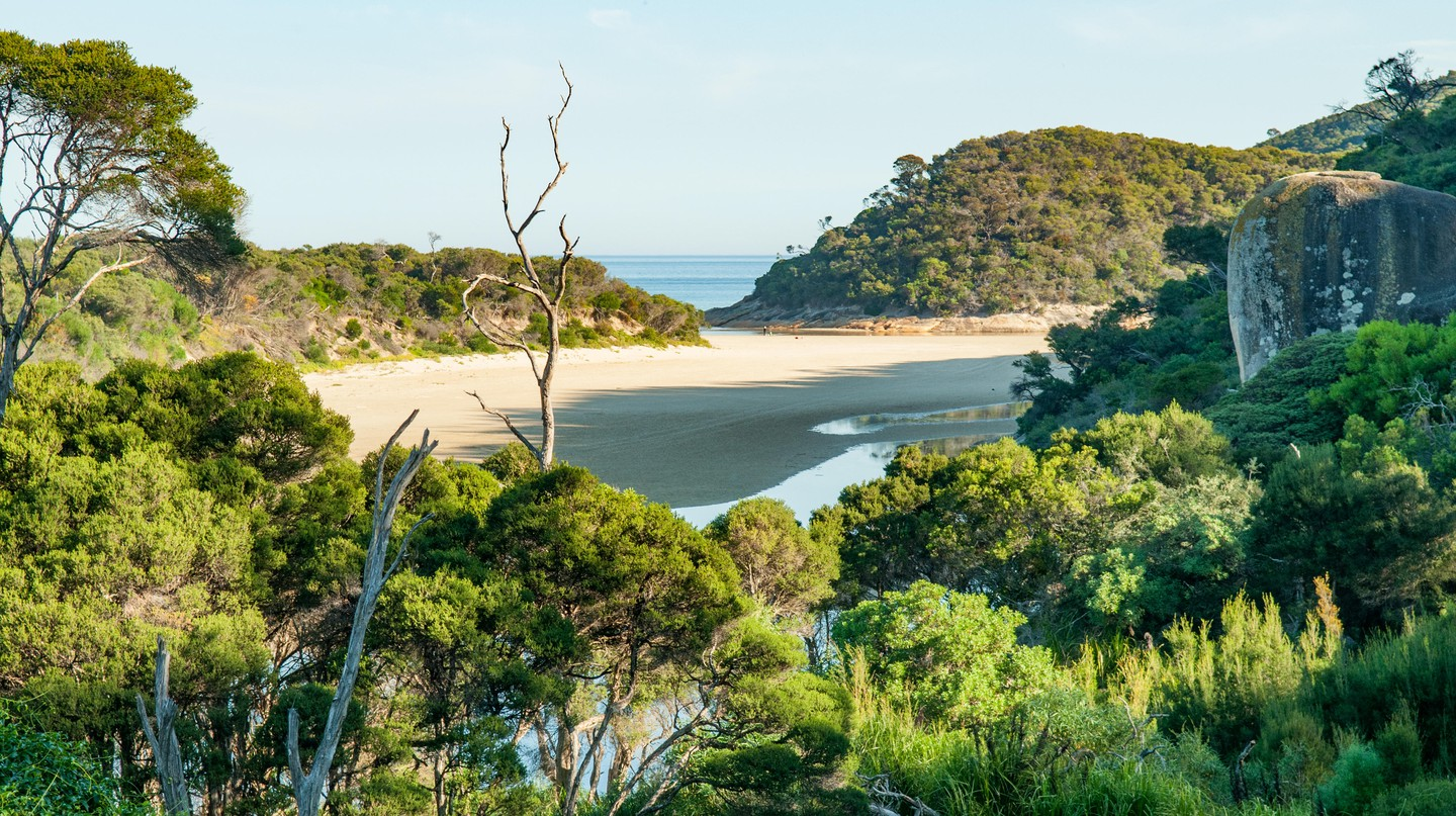 The Tidal River in Wilsons Promontory is renowned for its white-sand beaches and thick green jungles