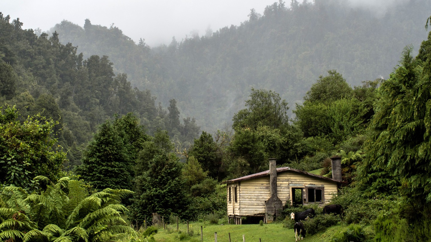 An old house in Te Urewera forest, whose legal guardians are the Tūhoe people