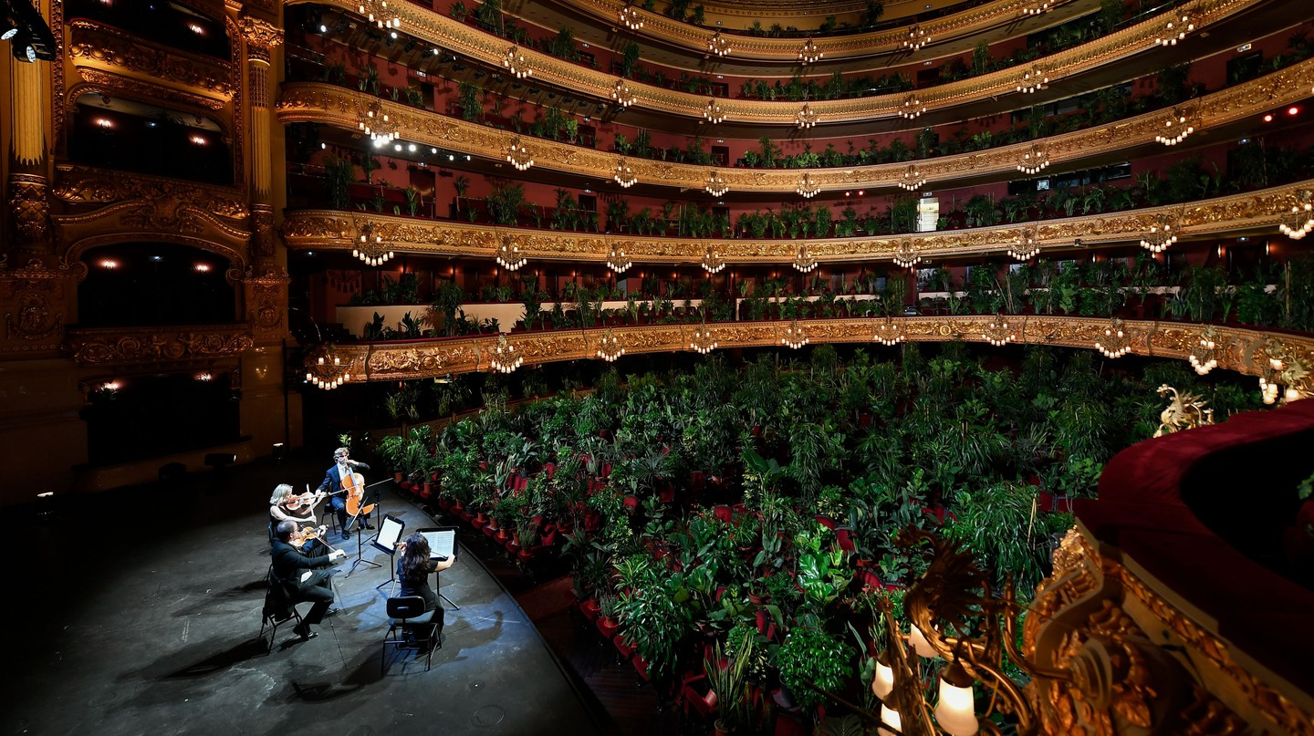 """Spanish artist Eugenio Ampudia  aimed to """"broaden our empathy and bring it to bear on other species"""" by """"using art and music and inviting nature into a great concert hall"""""""