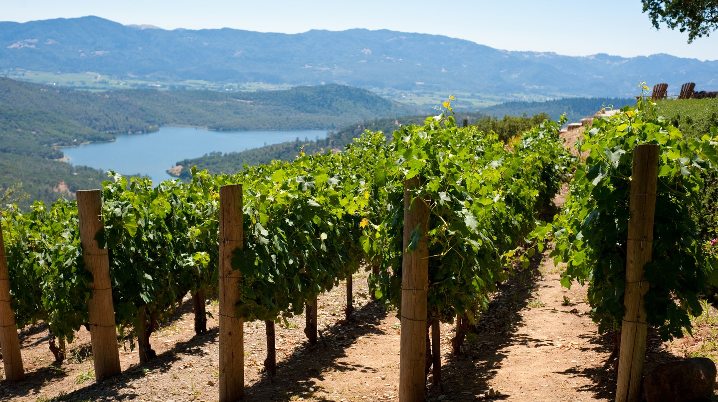 Unwind among the rolling hills and vineyards of Napa Valley