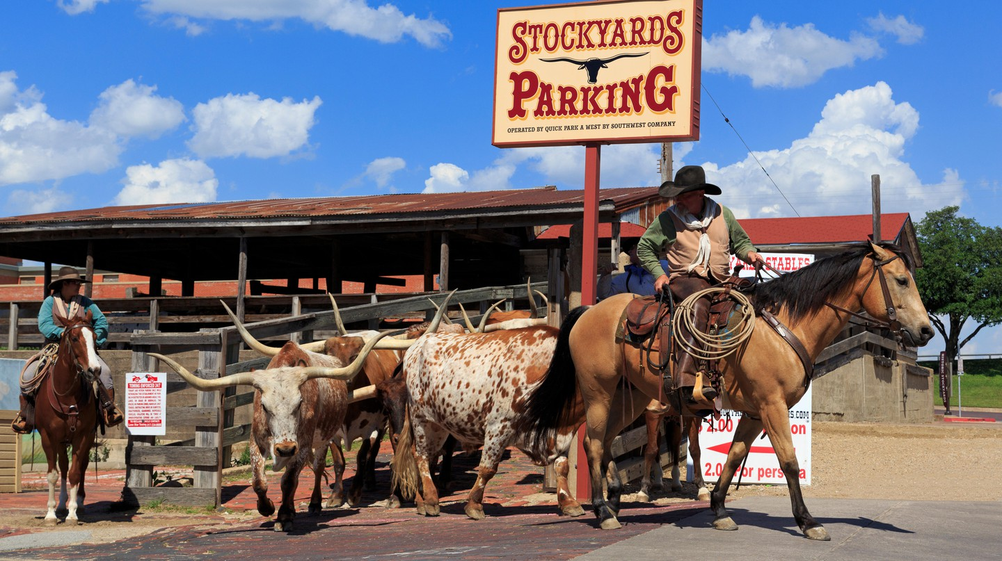 Visit Stockyards Stables to watch real-life cowboys in action