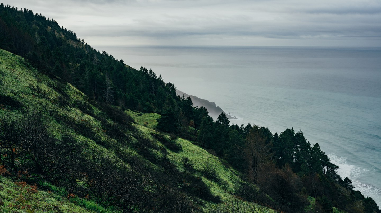 Relive a Californian Road Trip With These Photos
