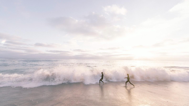 The breathtakingly beautiful La Jolla Shores