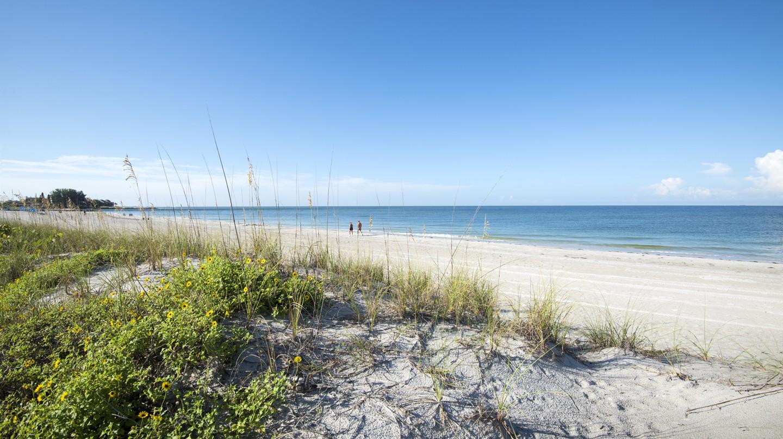 Madeira Beach, Sand Dune, Florida.