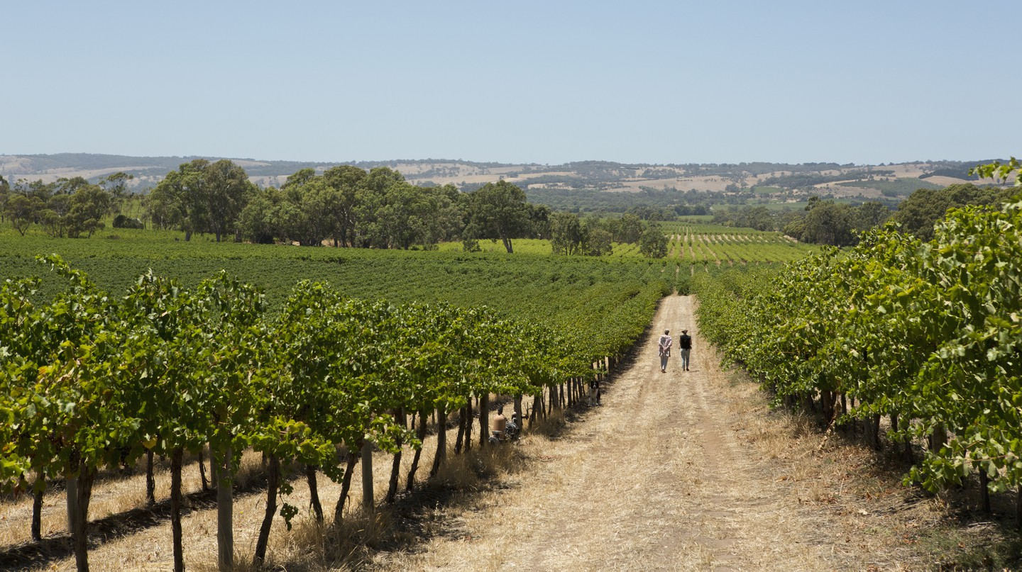 Now you can book your stay in a hotel set among the vineyards