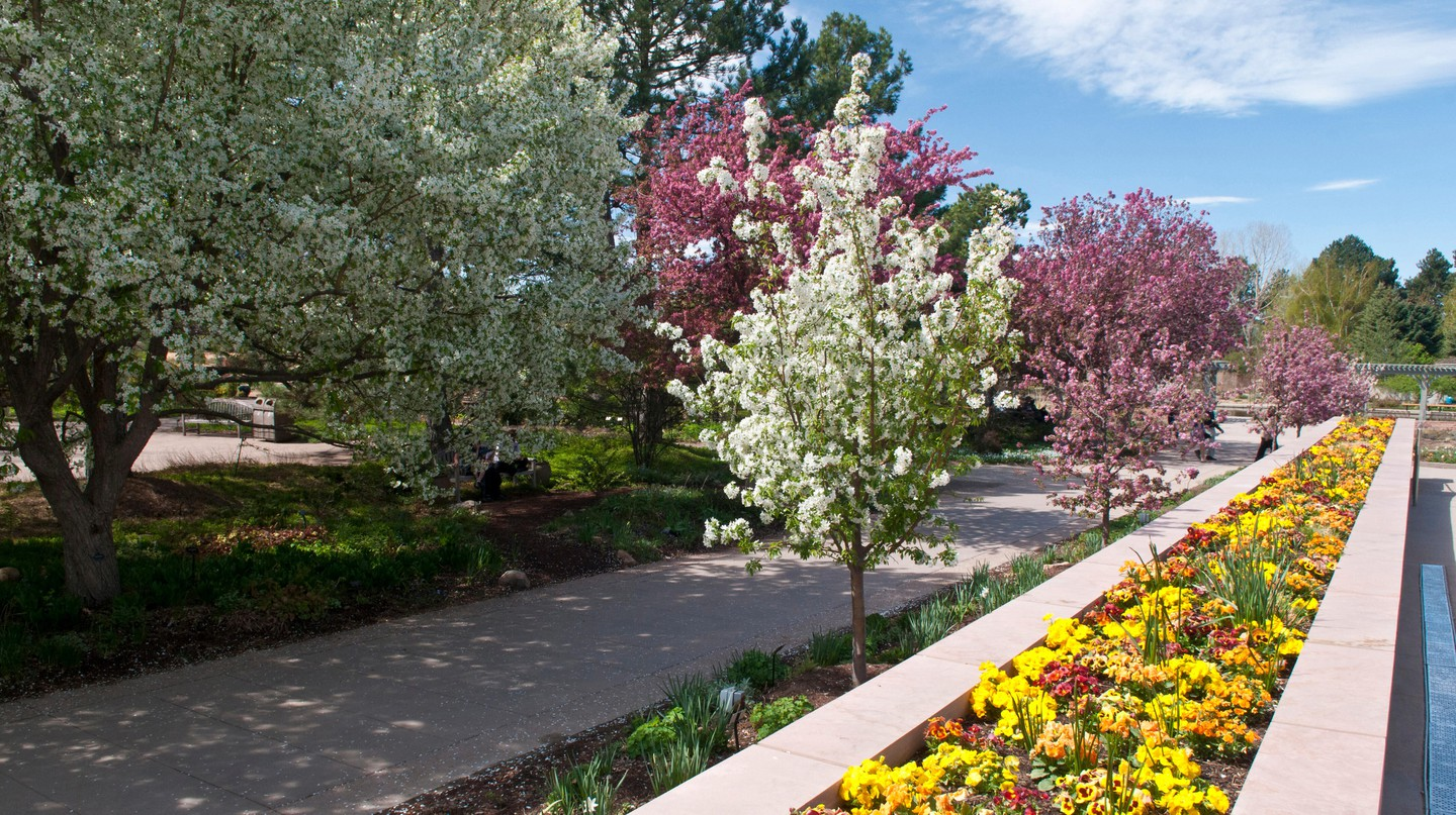 From thrilling adventures to tranquil gardens, Downtown Denver has it all