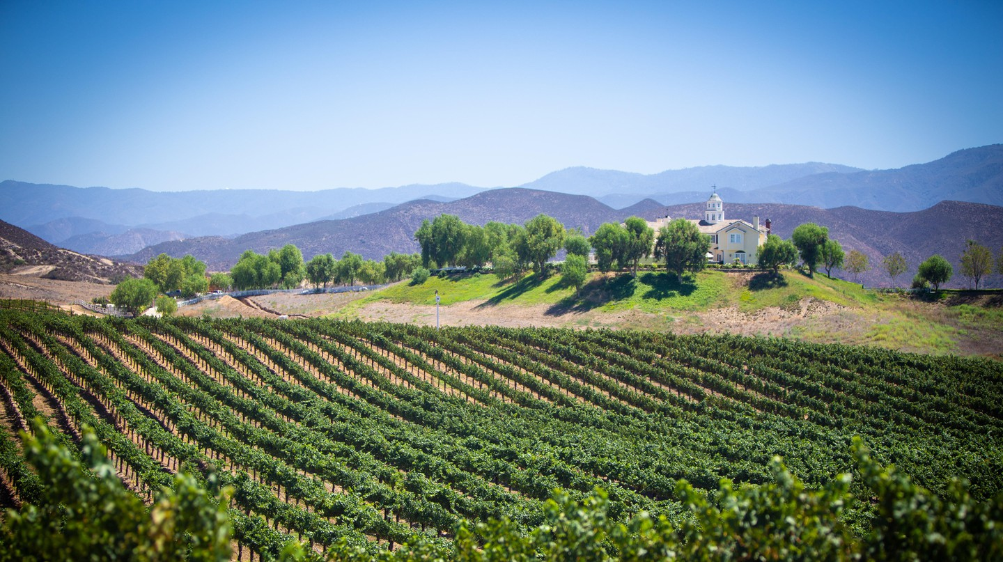 Temecula Valley and all of its wineries make for an excellent day trip from San Diego
