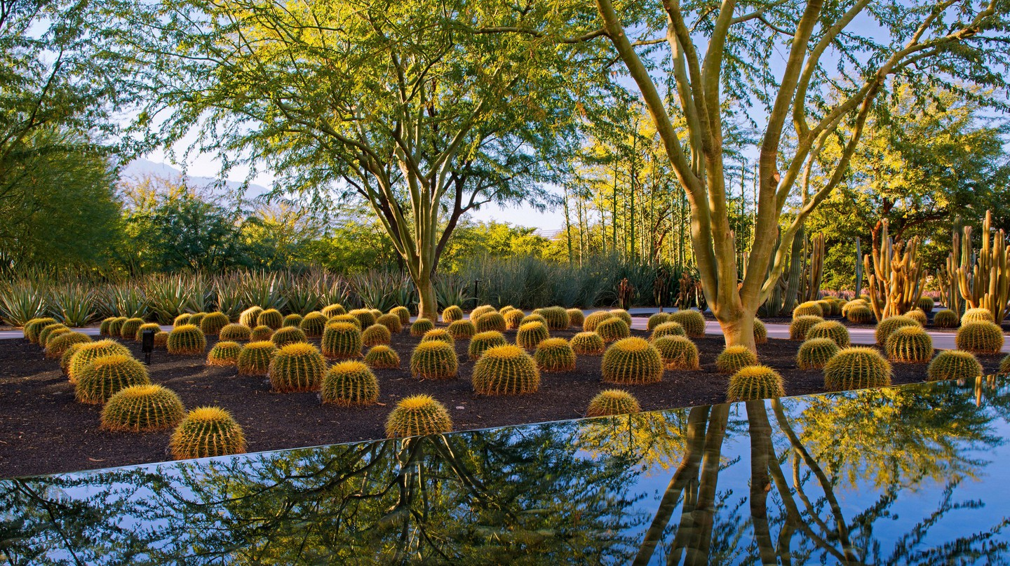 Sunnylands Center provides a peaceful desert retreat free of charge