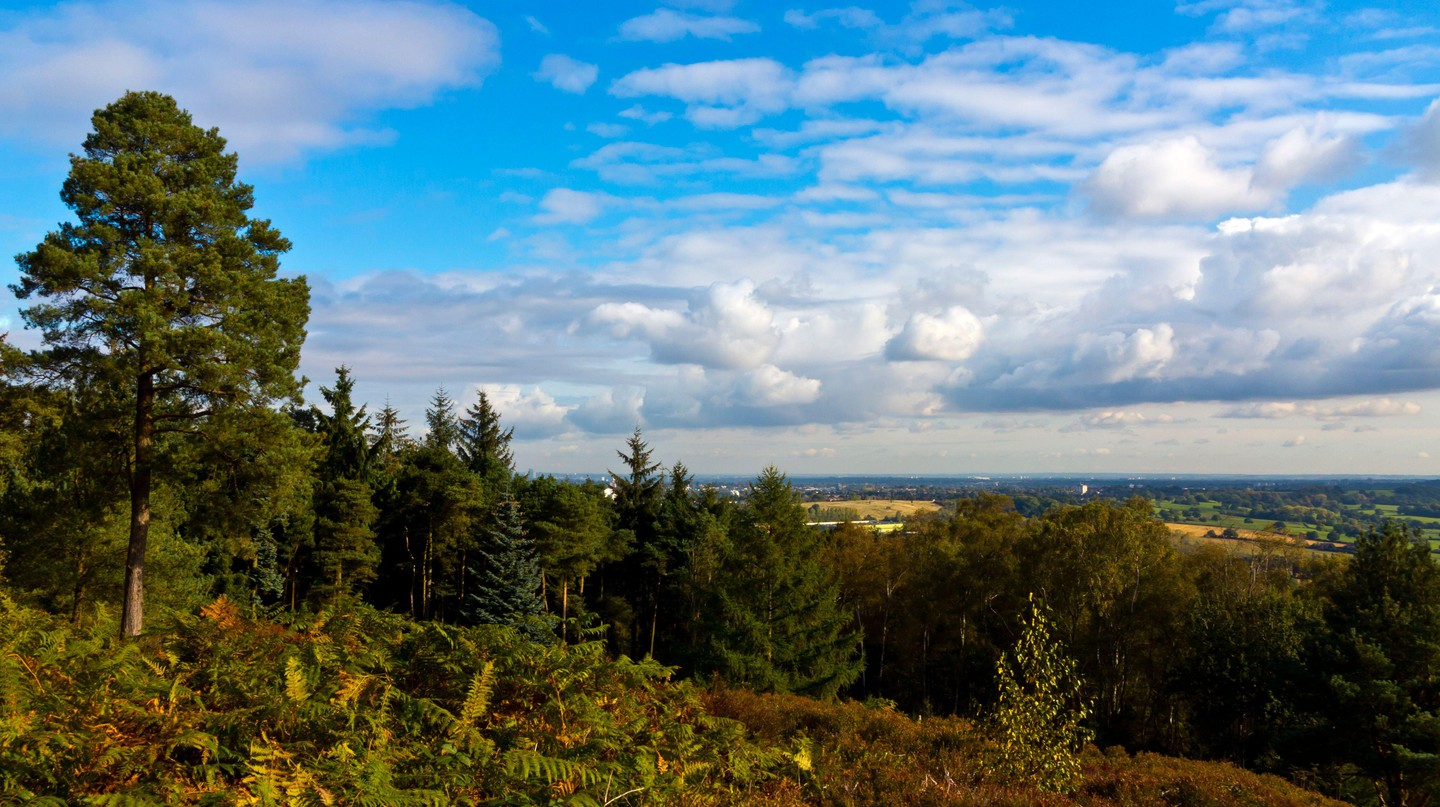 Lickey Hills Country Park lies an easy ten miles south-west of central Birmingham, making it ideal for a day outdoors