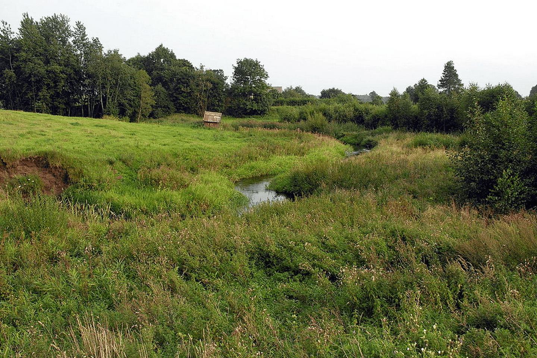 الحدائق فى ليتوانيا