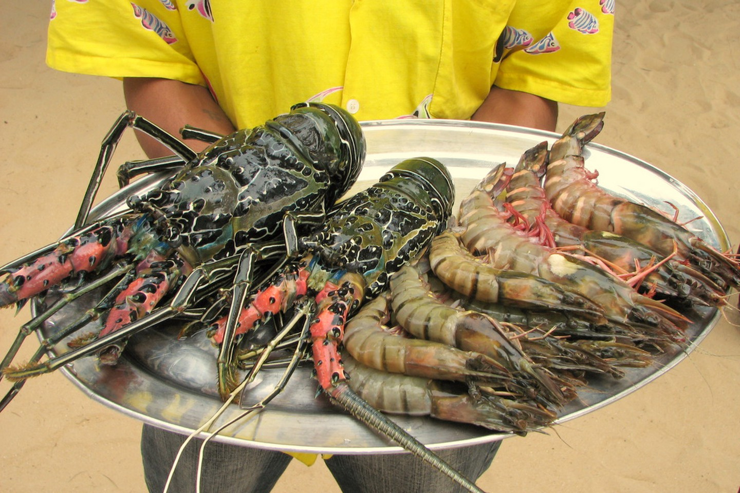 Of Lobsters and King Prawns
