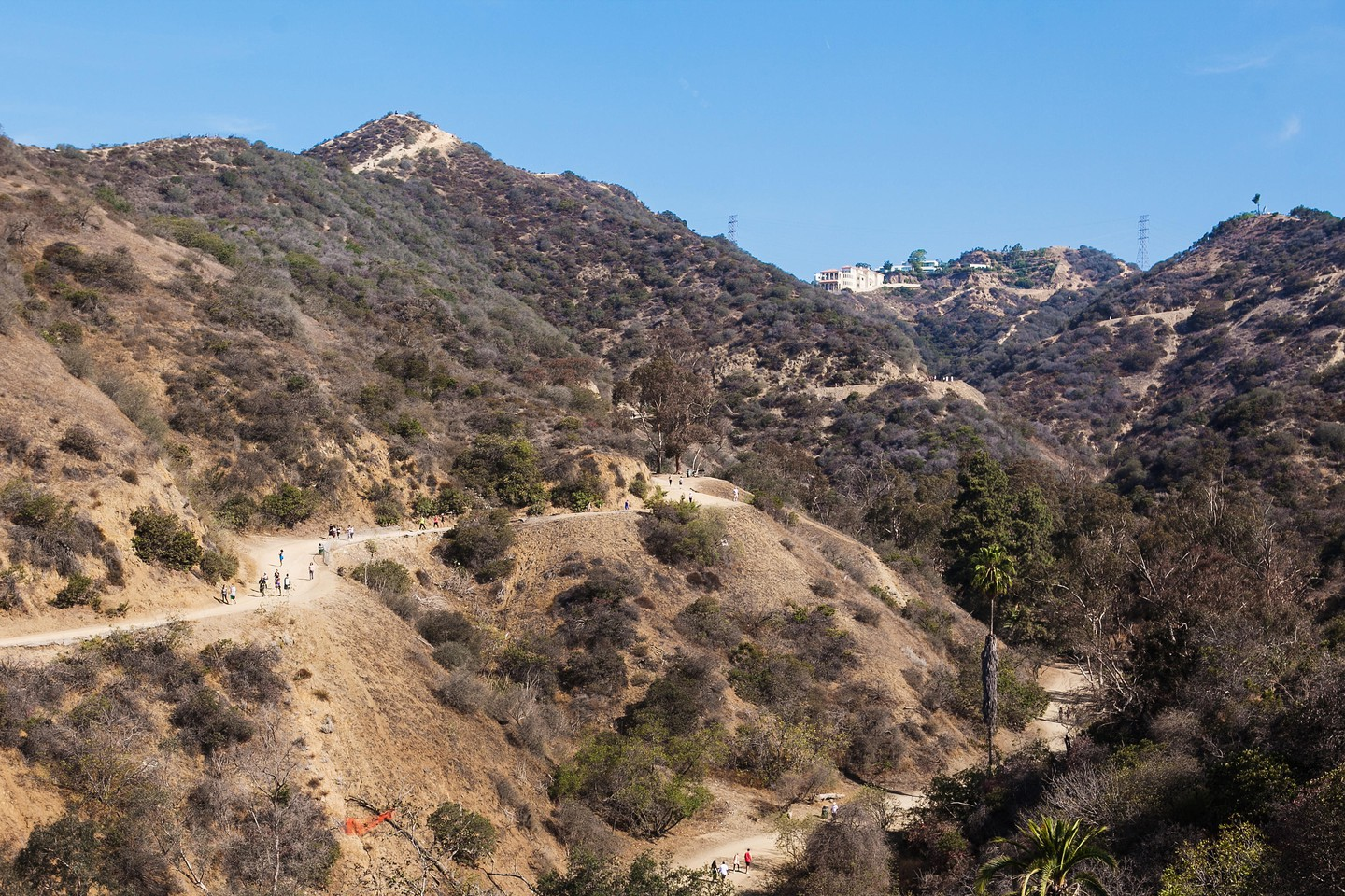 View of natural in mountains, Los Angeles runyon canyon park, California