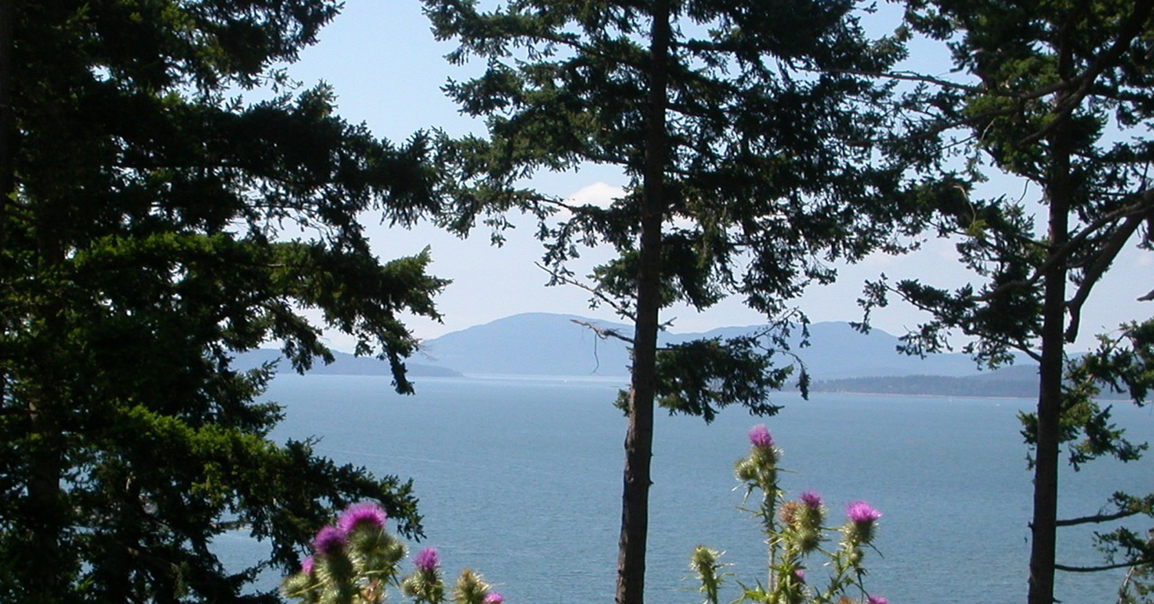 Home To Western Washington University Bellingham Is A Beautiful Coastal Community Kenny Easwaran