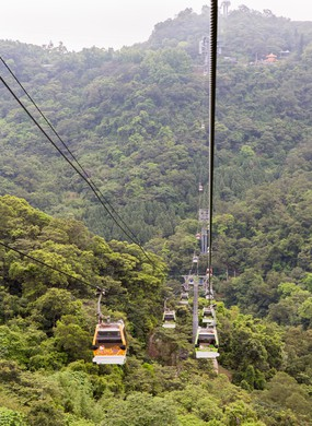 Forests on the outskirts of Taipei, viewed from the Maokong Gondola