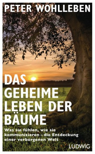 Das geheime Leben der Bäume | Courtesy of Random House