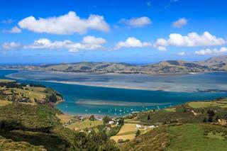 The Best of Culture in Dunedin, New Zealand