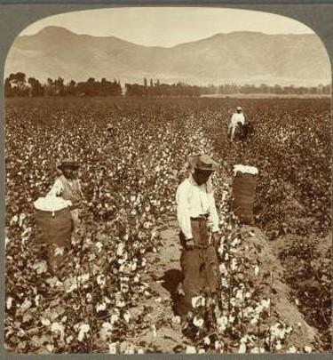 Chinese labourers in Peru.