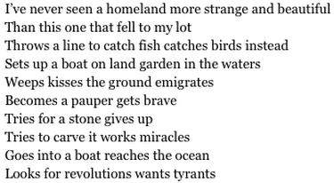 "from ""Beautiful and Strange Homeland"""