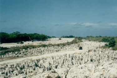 Nauru Phosphate Fields