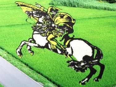 Inakadate Napoleon rice paddy art