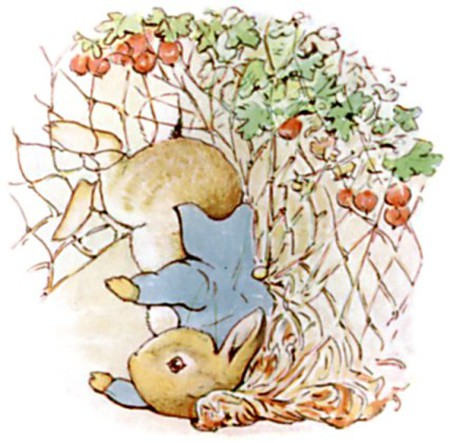 Illustration from The Tale of Peter Rabbit | © Innotata / WikiCommons